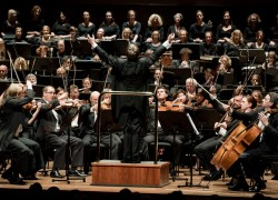 Image of Melbourne Symphony Orchestra