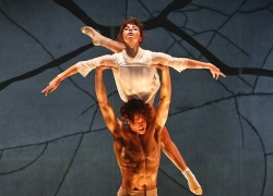 Image of The Australian Ballet