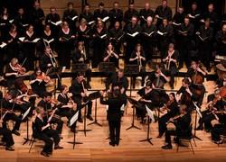Image of Australian Brandenburg Orchestra