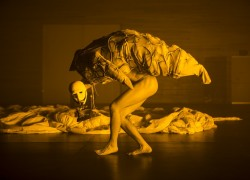 Image of nominee in the Ballet, Dance & Physical Theatre category
